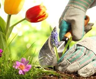 Садові роботи