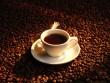 Напій з екстрактом зелених кавових зерен Велнео Кофі Слендер